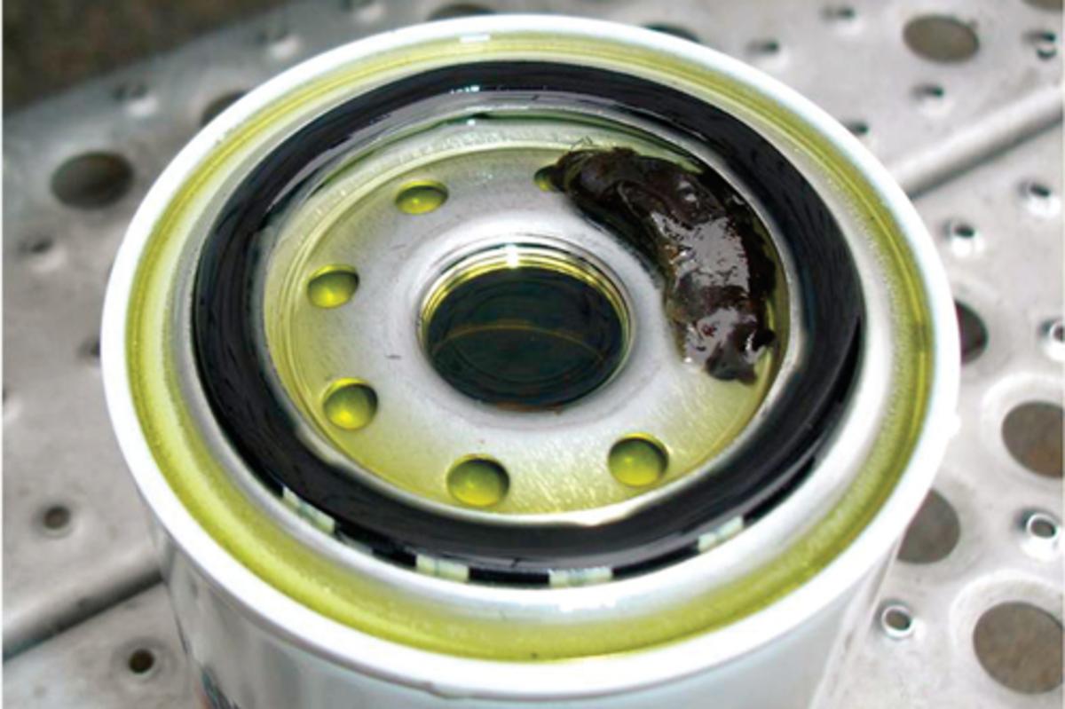 Fuel Filter 500